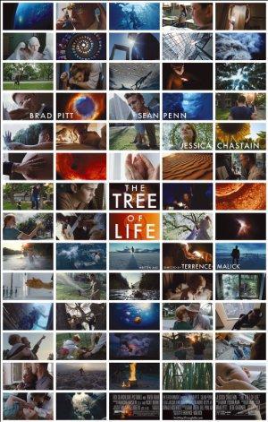 https://cdn.film-fish.comThe Tree of Life