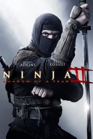 https://cdn.film-fish.comNinja: Shadow of a Tear