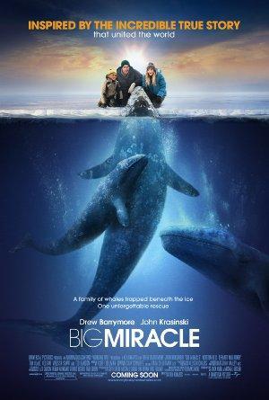 https://cdn.film-fish.comBig Miracle
