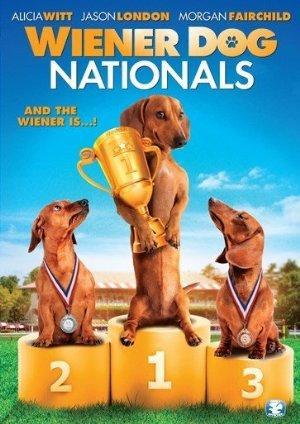 https://cdn.film-fish.comWiener Dog Nationals