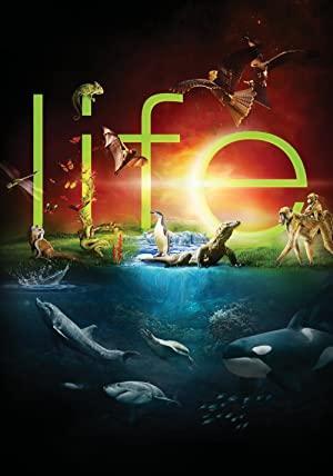 Life mini-series