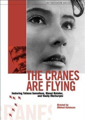 https://cdn.film-fish.comThe Cranes are Flying