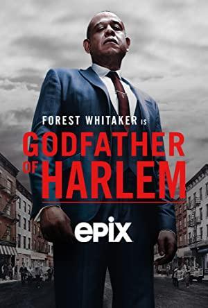 https://cdn.film-fish.comGodfather of Harlem