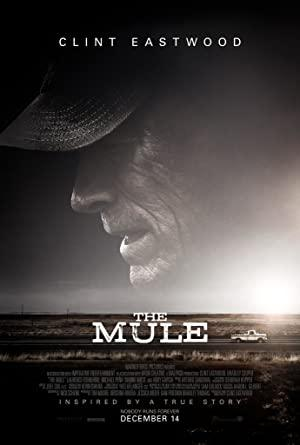 https://cdn.film-fish.comThe Mule