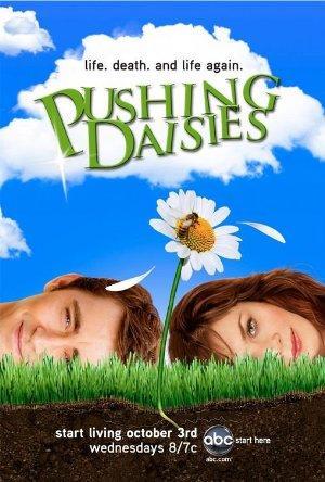 https://cdn.film-fish.comPushing Daisies