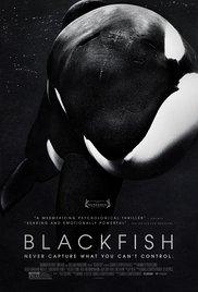 https://cdn.film-fish.comBlackfish