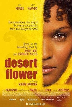https://cdn.film-fish.comDesert Flower