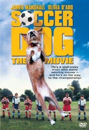 https://cdn.film-fish.comSoccer Dog: The Movie