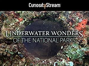 Underwater Wonders of the National Parks