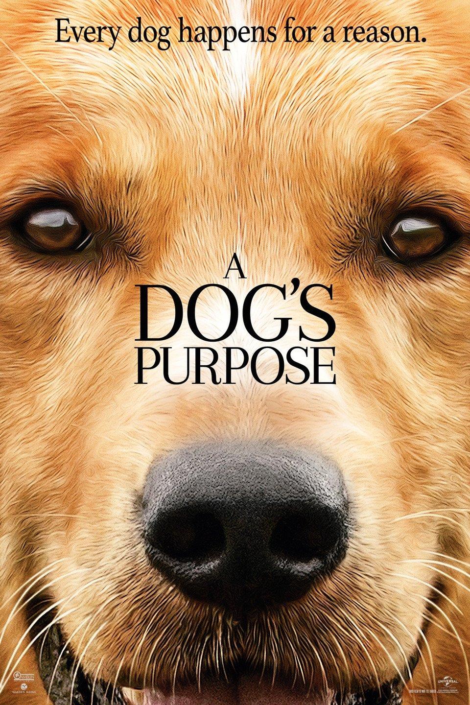 https://cdn.film-fish.comA Dog's Purpose