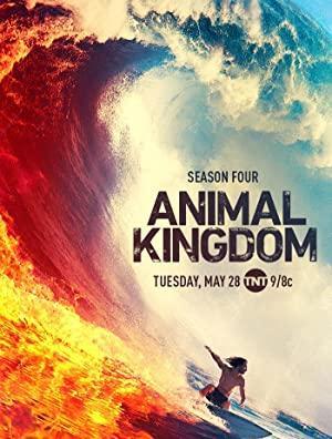 https://cdn.film-fish.comAnimal Kingdom