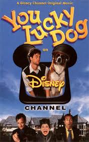 https://cdn.film-fish.comYou Lucky Dog