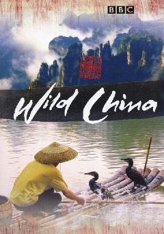 https://cdn.film-fish.comWild China