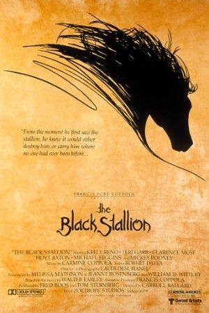 https://cdn.film-fish.comThe Black Stallion