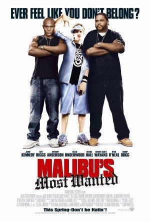 https://cdn.film-fish.comMalibu's Most Wanted