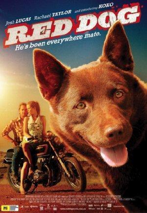 https://cdn.film-fish.comRed Dog