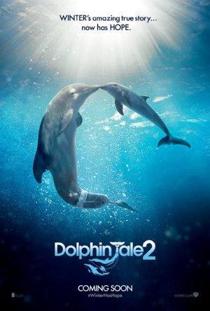 https://cdn.film-fish.comDolphin Tale 2