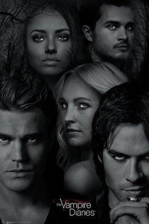 https://cdn.film-fish.comThe Vampire Diaries
