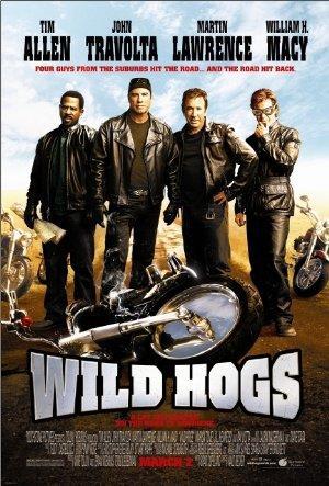 https://cdn.film-fish.comWild Hogs