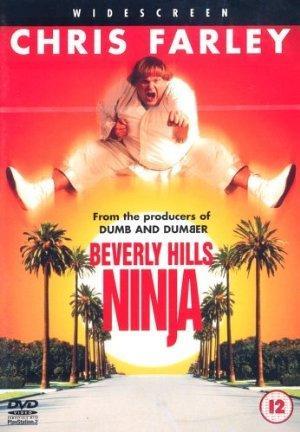 https://cdn.film-fish.comBeverly Hills Ninja