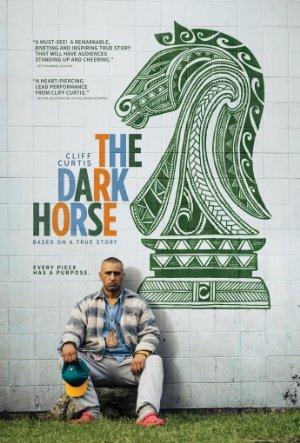https://cdn.film-fish.comThe Dark Horse